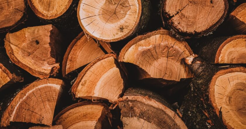 Storing Your Firewood This Way Will Make it More Efficient Than Ever.